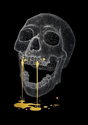 Wire Frame Skull - 100x160cm
